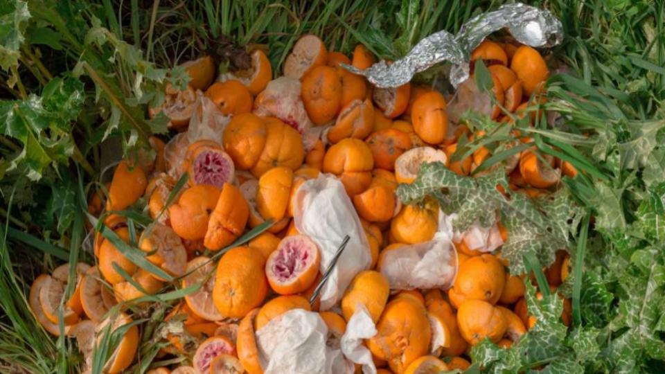 Peelpioneers recyclefabriek sinaasappelschillen
