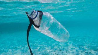 UnPlastic: duurzame verpakkingsmateriaal