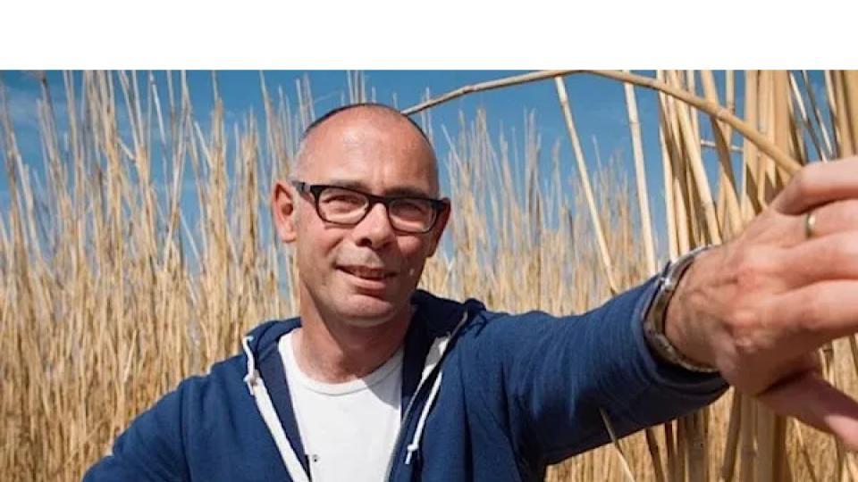 Olifantsgras als duurzame grondstof voor plastic, papier en beton