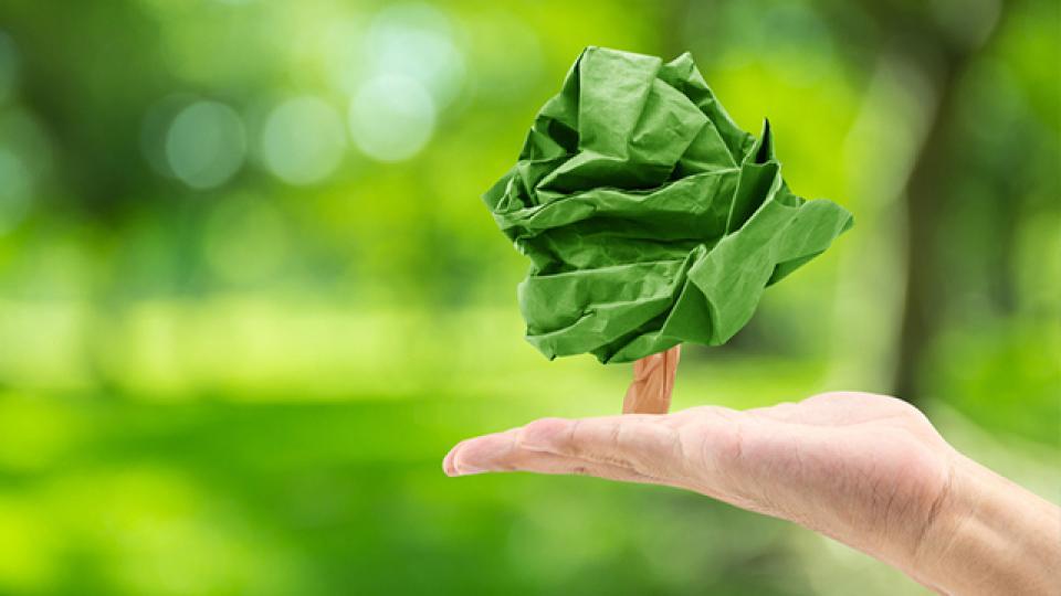 Waarom papierrecycling?